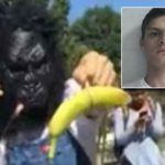 Student Arrested For Wearing A Gorilla Mask At Black Lives Matter Protest