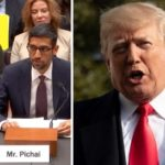 "Google Ceo Explains Why Searching ""Idiot"" Brings Up Photos Of Donald Trump"